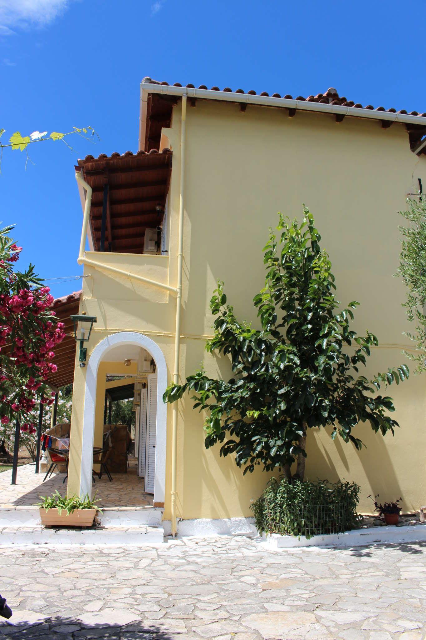 Wunderschöne Olivenhaine
