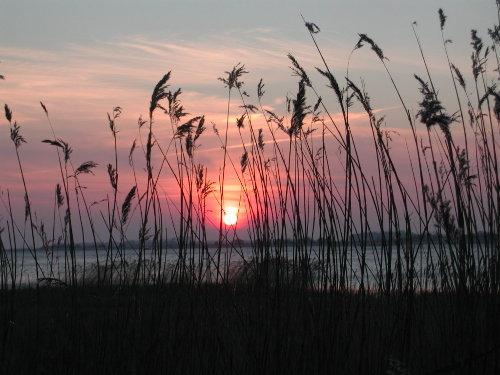 Sommer Sonne Baden am Ostseestrand!!