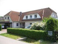 Haus Sommerwind in Ostseebad Zingst - kleines Detailbild