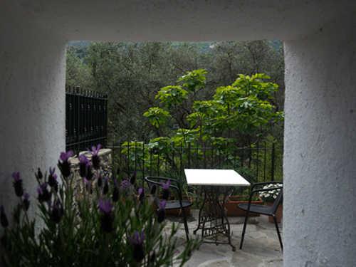 Blick aus dem Küchenfenster auf Terrasse