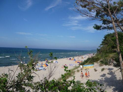 """Strand am """"Bakenberg"""", 3 km von Fewo"""