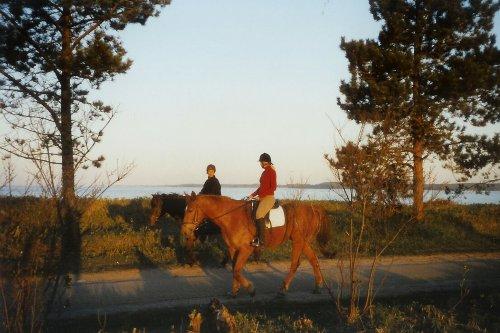 Reiter auf der Strandpromenade