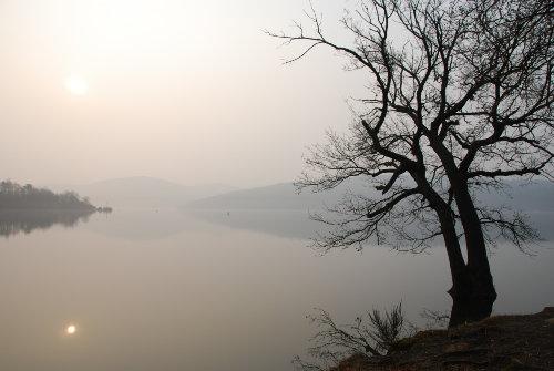 Der Edersee im Nebel
