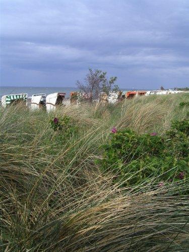 Die D�nen und der Strand vor dem Objekt