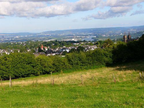 Die Weidwiese mit Blick ins Rheintal