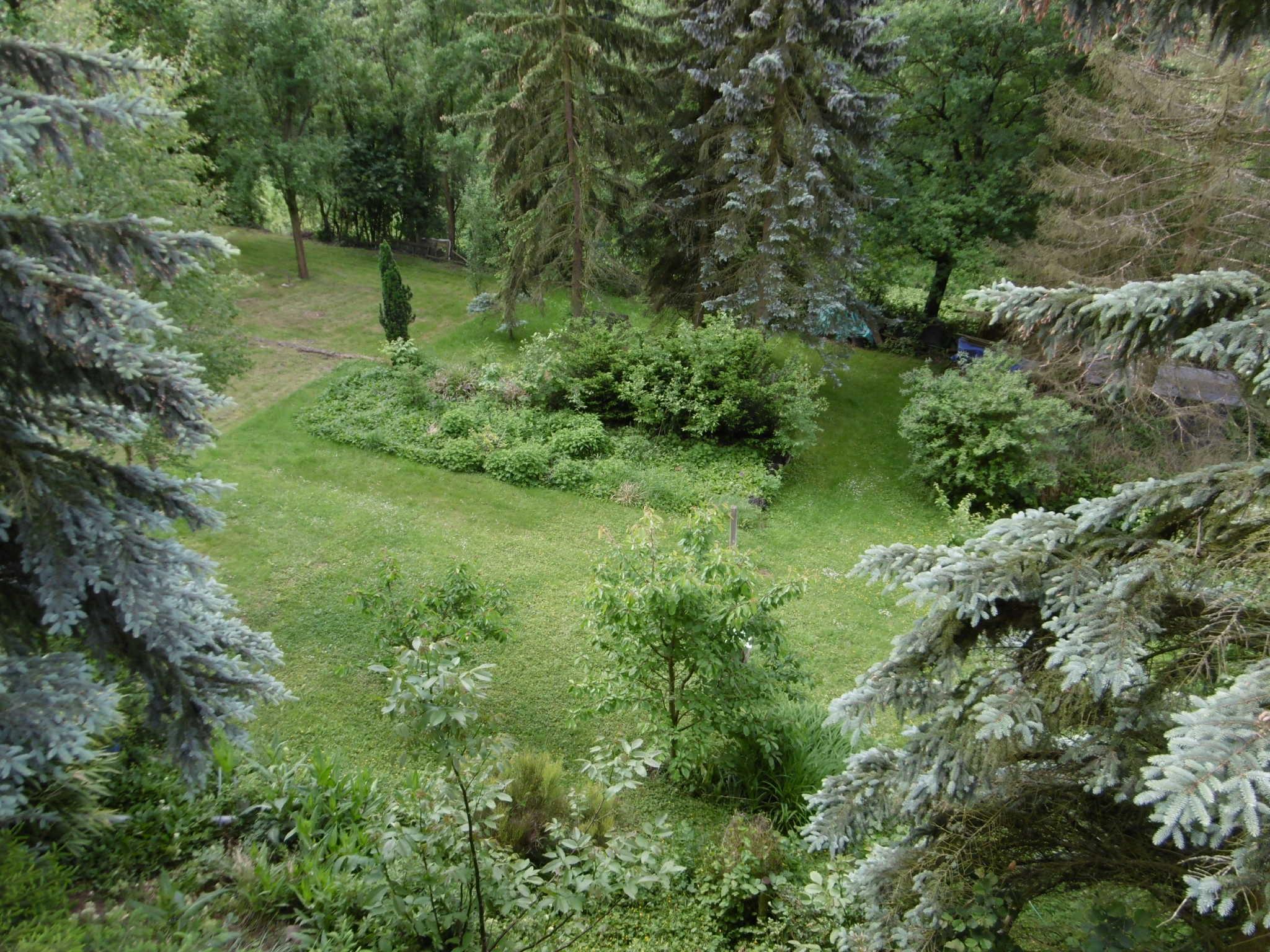 Vom Balkon ein herrlicher Blick ins Grün