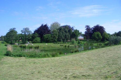 Garten und Teichanlage mit Insel