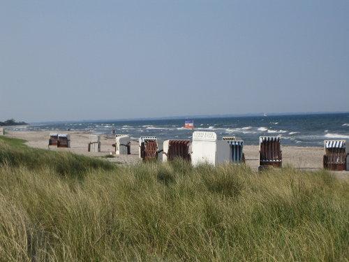 15 km Strand ! Was will man mehr ?