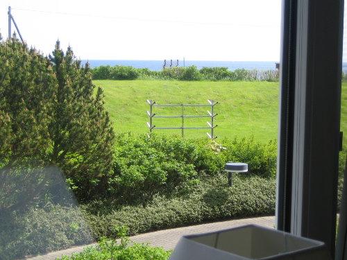 Traumblick aus dem Fenster