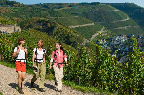 Wandern auf dem Rotweinwanderweg
