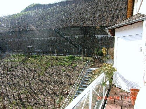 Blick in die Weinberge aus Ferienvilla