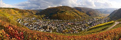 Panoramabild Dernau im Herbst