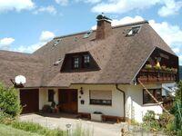 Ferienwohnungen Grether - Wohnung Sonnenterrasse in Kleines Wiesental-Sallneck - kleines Detailbild