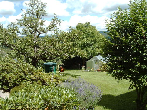 Im Garten, direkt neben der Terrasse