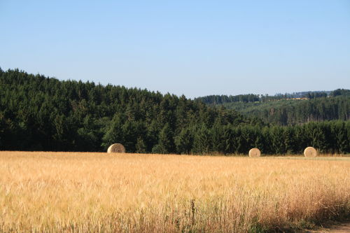 wunderschöne Landschaften