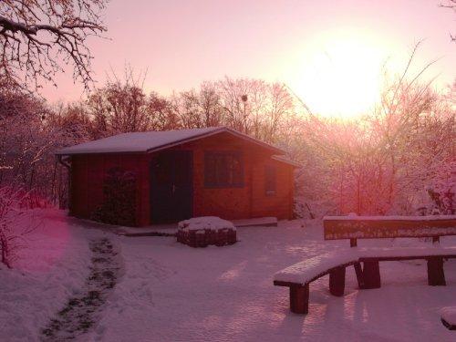 Wintermorgen im Garten