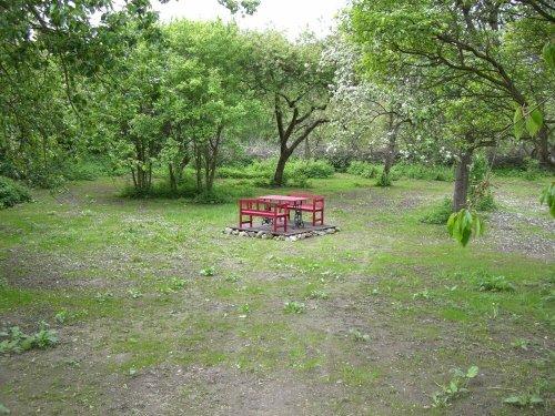 Blick in den ehemaligen Park des Guts