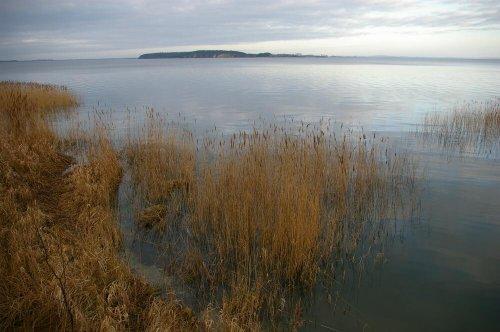 Am Achterwasser mit Usedom (10 min Rad)