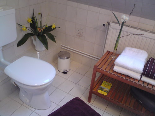 ... und noch einmal Bad...