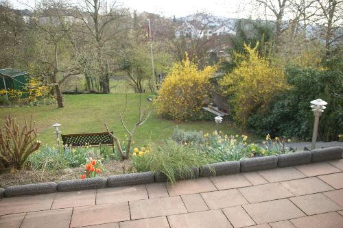 Blick in den Garten im Frühling