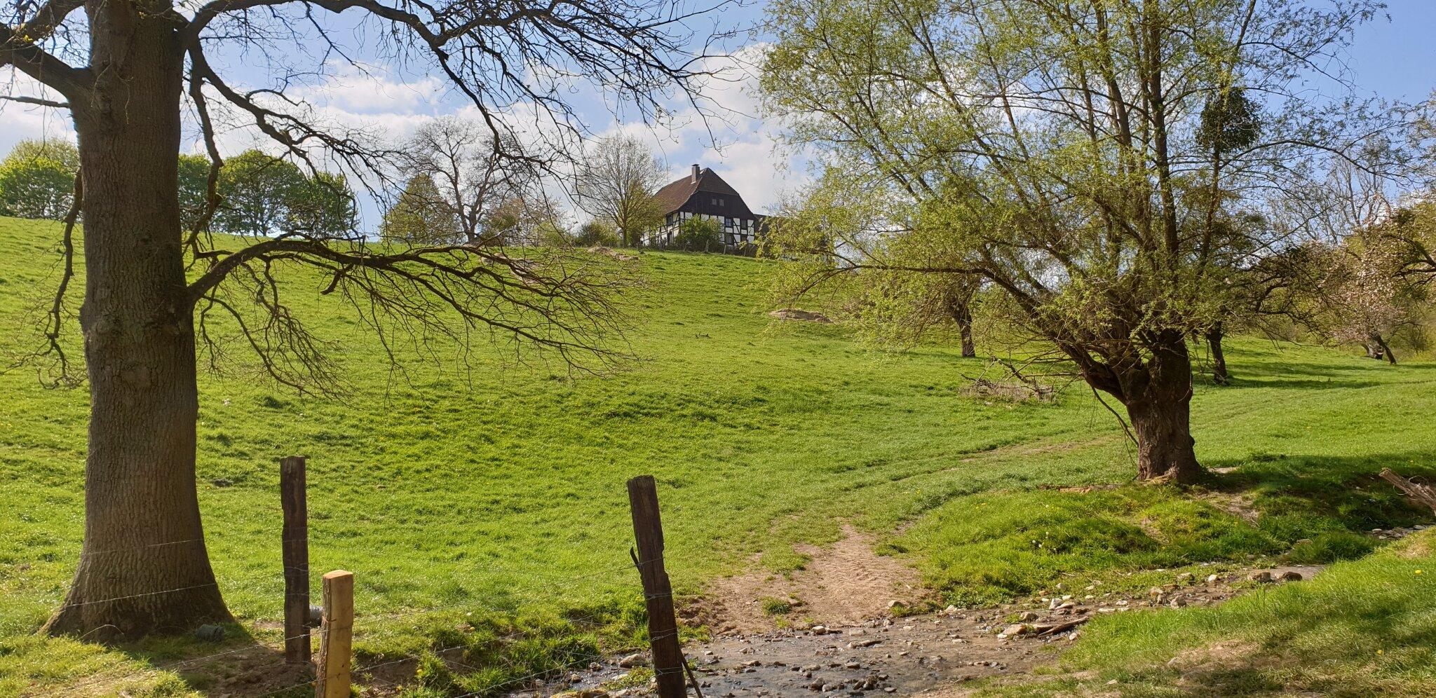 Blick vom Birnbaum zum Backhaus