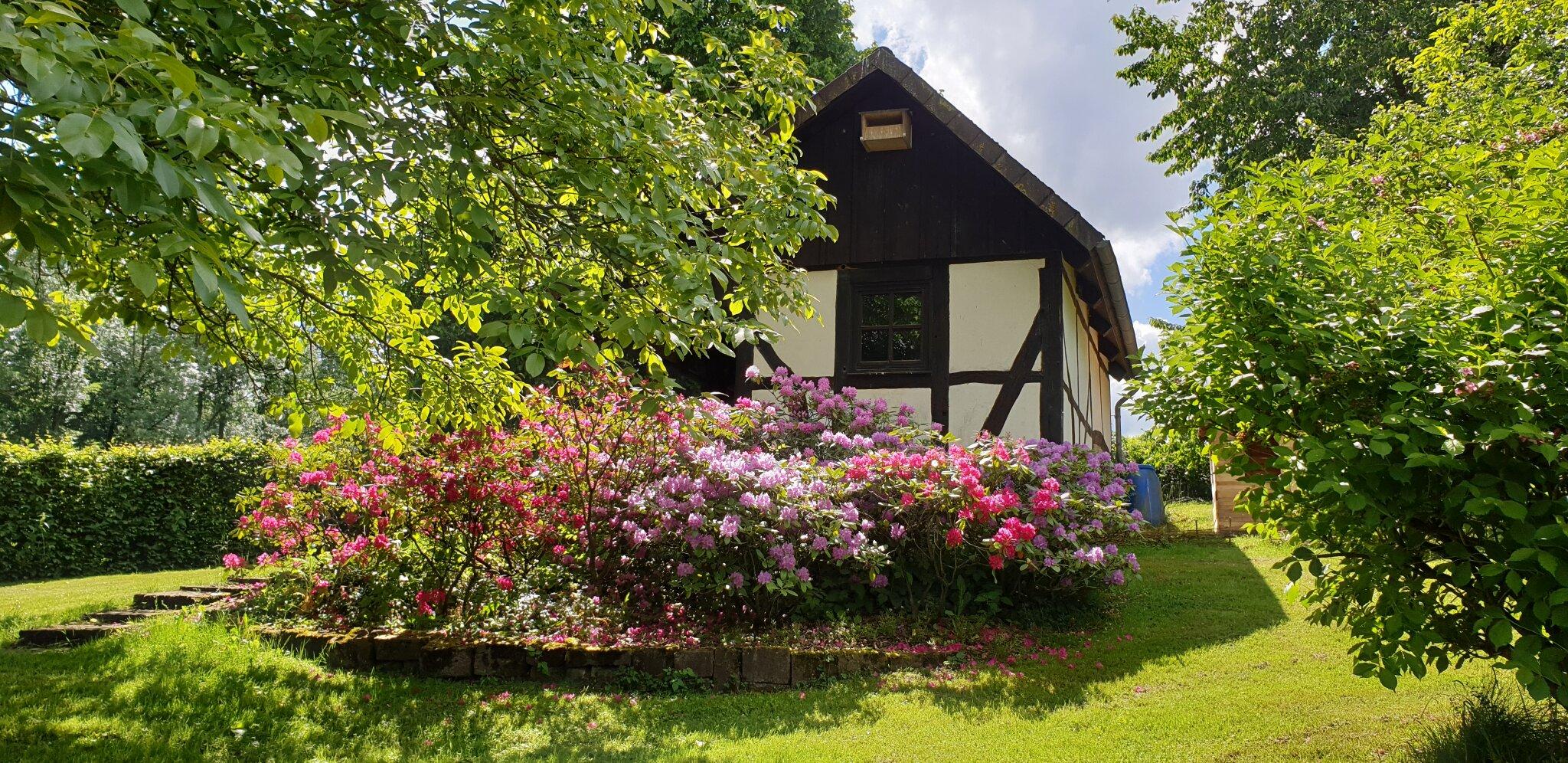 Hof mit Blick zum Backhaus und Wald