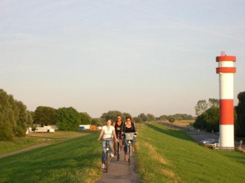 Radweg auf dem Elbdeich/Krautsand