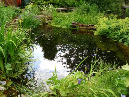 Haus 12D relaxen am Teich