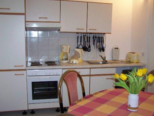 Einbauküchen im Wohnbereich aller Fewo