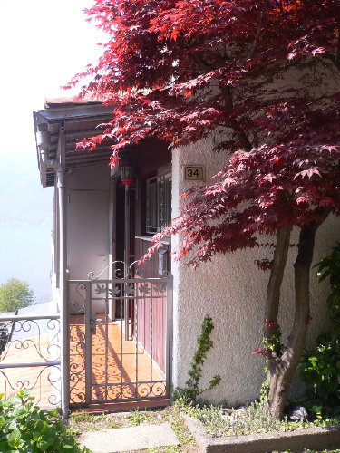 Hauseingang ebenerdig (keine Treppe)