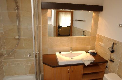 Ferienhaus Elbinsel Badezimmer