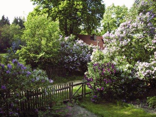 Blick auf Nachbarhaus