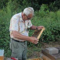 Vermieter: Herr Hemm bei seinen Bienen