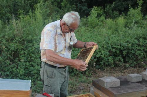 Herr Hemm bei seinen Bienen