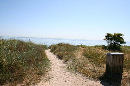 Die kleinen Wege zu der Endlose Strand