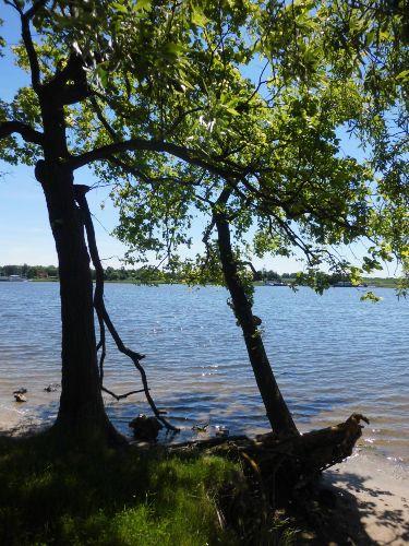 Stralsunder Natur-Halbinsel Devin