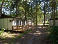 Camp Mövenort in Dranske - kleines Detailbild