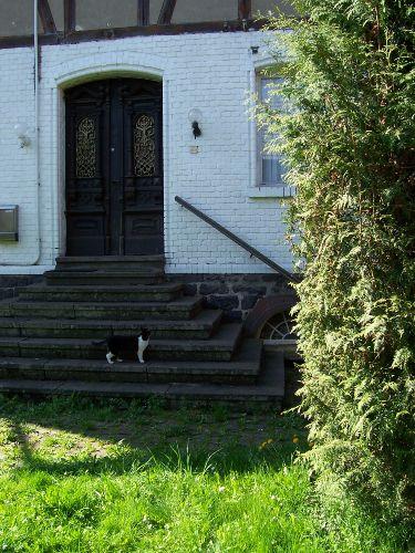 Historische Eingangstür mit Nachbarkatze