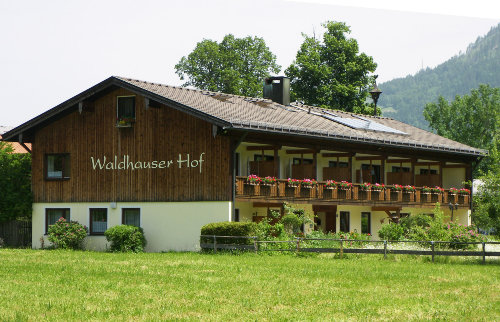 Detailbild von Waldhauserhof - Ferienwohnung 4