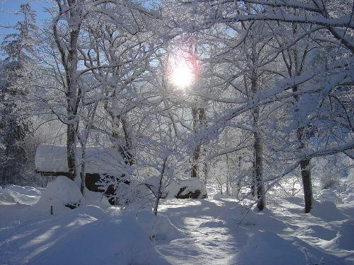 Alle Winter Aktiv-Angebote nah+meist gut