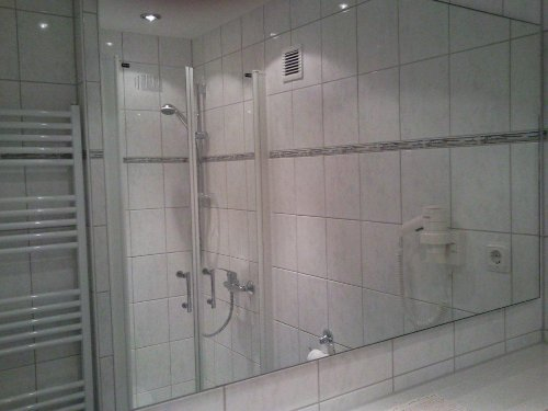 Dusche und WC; 2010 renoviert