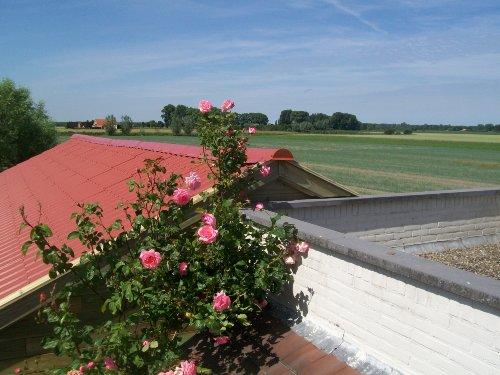 Zusatzbild Nr. 13 von Ferienvilla Kruisdijk 2