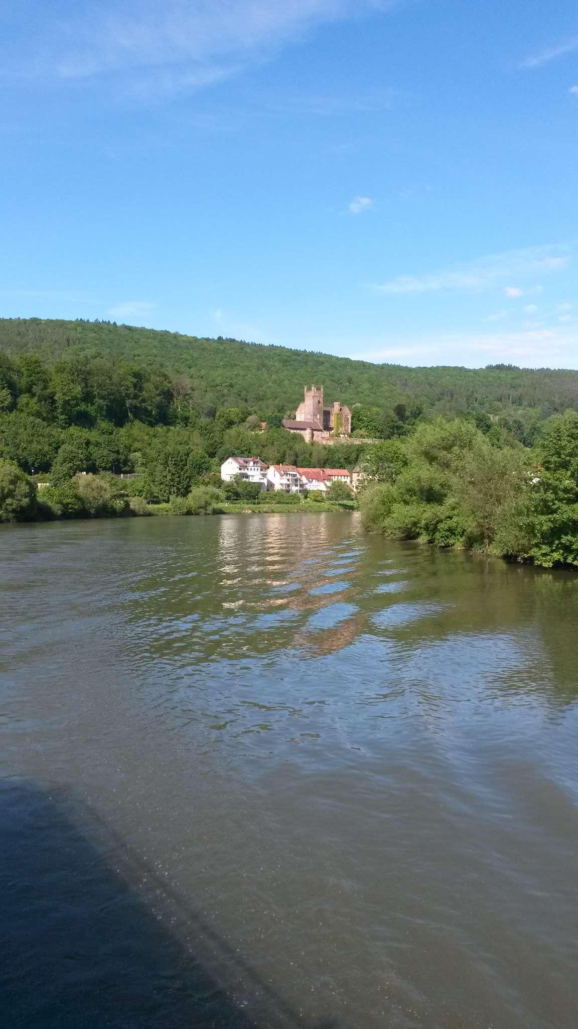2. Haus von links, am Neckar
