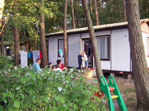 Detailbild von Camp Mövenort - Ferienhütten