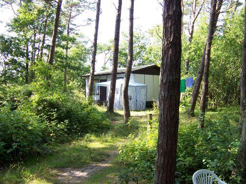 Zusatzbild Nr. 01 von Camp Mövenort - Ferienhütten