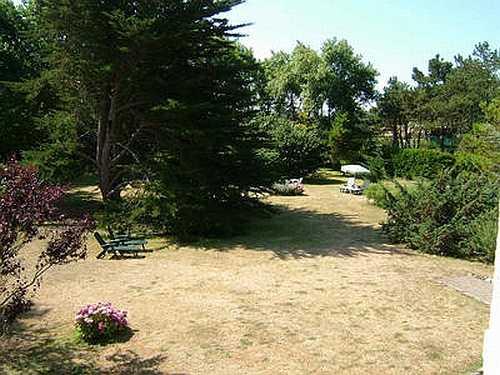 Garten im Hochsommer