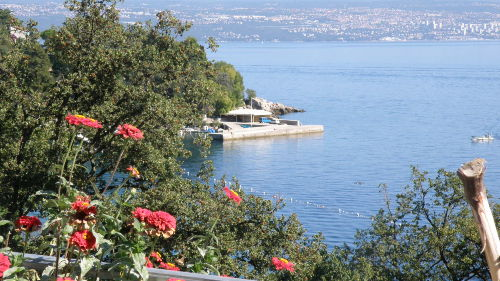 Zusatzbild Nr. 04 von Villa Lela