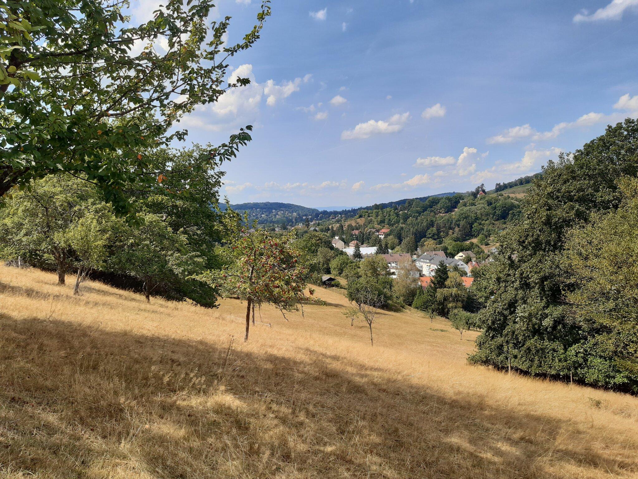 Blick vom Haus über Baden-Baden