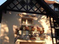 Ferienwohnung 'Bed and Garden' in Berlin - kleines Detailbild