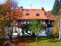 Altes Zollhuesli - Ferienwohnung Karlshorst in Schluchsee - kleines Detailbild